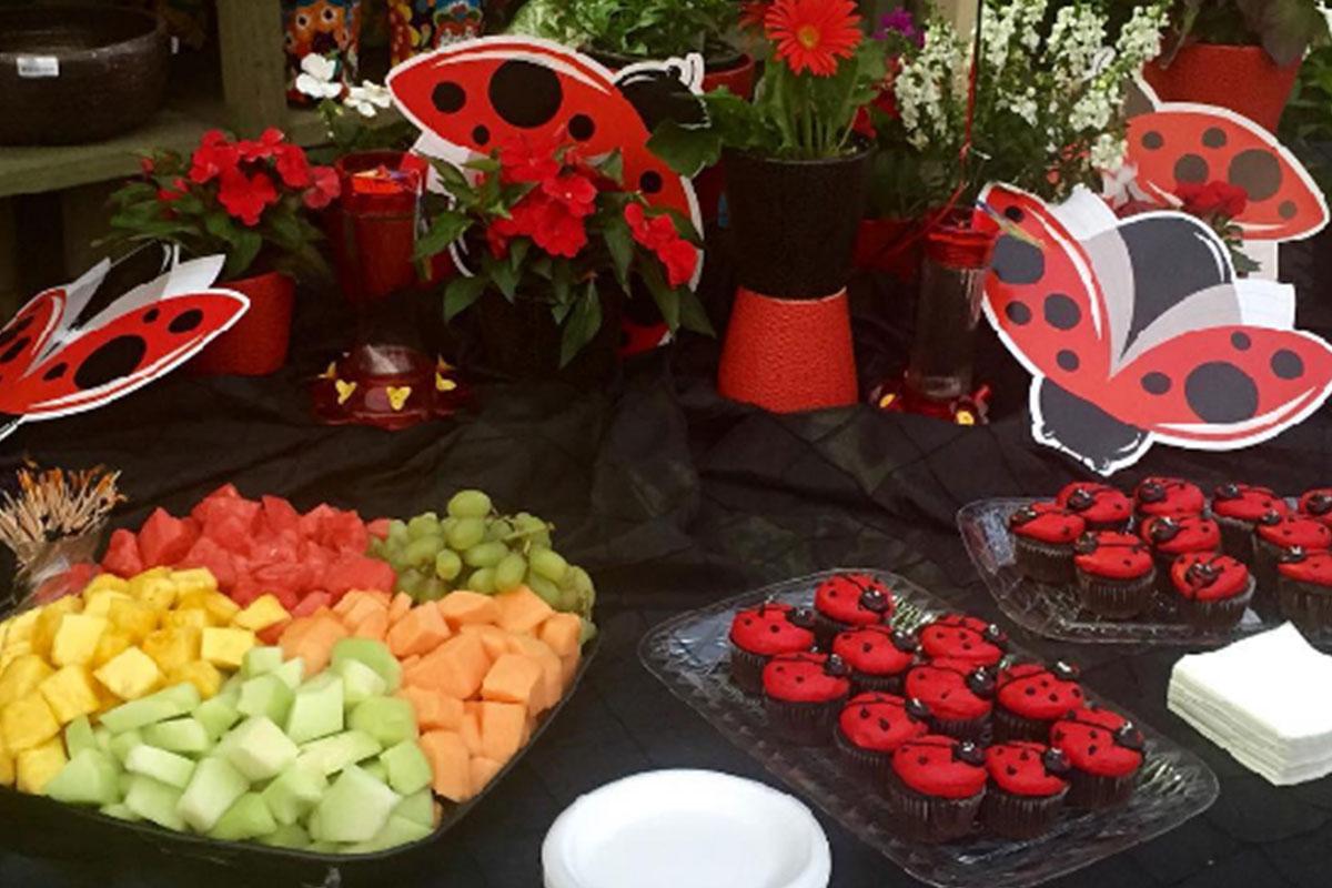 Pike Nurseries Ladybug Weekend Brave Public Relations
